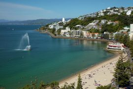1-fountain-oriental-bay-wellington-david-wall